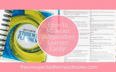 How to Make an Independent Learner Easily!