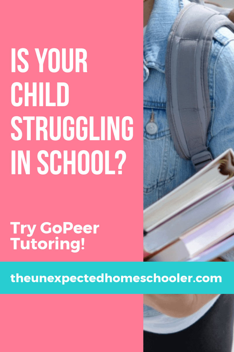 Homeschool teachers that come to your house