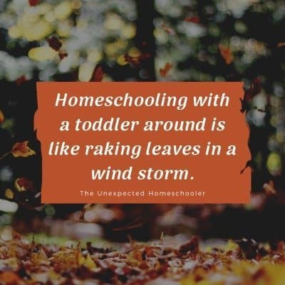 Homeschooling Toddlers Meme
