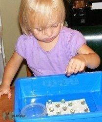 Montessori Activities at Home