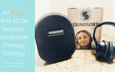 An Easy Way to Do Sensory Integration Therapy Training {Soundsory Review}