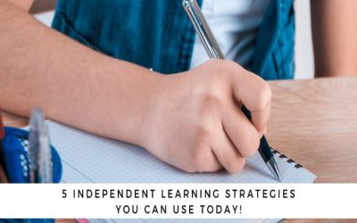 5 Effective Learning Strategies That Will Reap Rewards