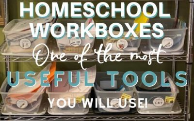 Homeschool Workboxes- One of the Most Useful Tools You'll Use